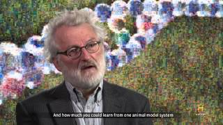 History® - Sequencing the first Human Genome