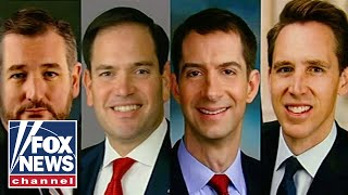 China sanctions 5 GOP senators in retaliation to US sanctions