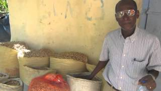 Community-managed seed banks strengthen food security and food sovereignty in Haiti
