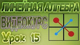 15. Матрицы. Виды матриц(Линейная алгебра. Матрицы. Виды матриц Видеокурс