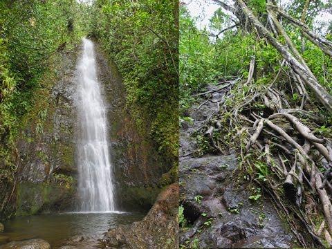 howzitboy hikes: Manoa