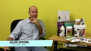 Julian Sprung Q&A: Part 1