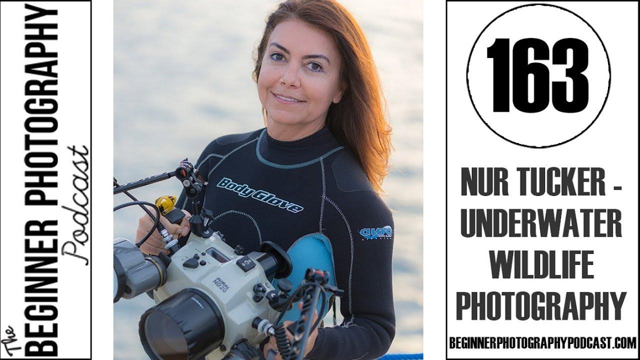 BPP 163: Nur Tucker - Underwater Wildlife Photography — The