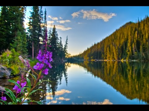 "Peaceful Music, Relaxing Music, Instrumental Music, ""Reflections"" by Tim Janis."
