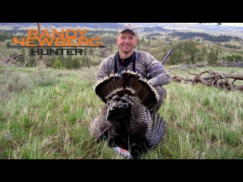 Hunting Montana Public Land Turkey With Randy Newberg (OYOA S1 E10)