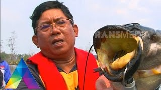 Download Video MANCING MANIA - Berburu Snakehead Ke Kalimantan Selatan 3-1 MP3 3GP MP4