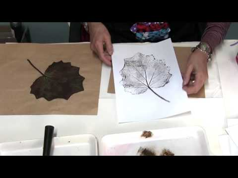 Printing for all ages - Printing from Nature