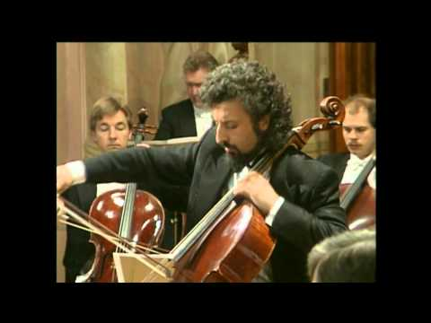 Mischa Maisky - Haydn - Violin Concerto No 4 in G major