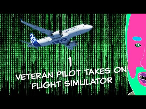 Flight Simulator #1