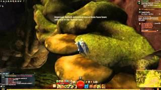 Guild Wars 2 Dive Master: Chak Hive Achievement and Vista in TD