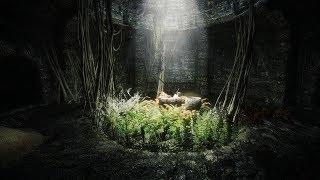 Skyrim - Сборка Association Evolution - Сложность Легенда - Редгард Паладин