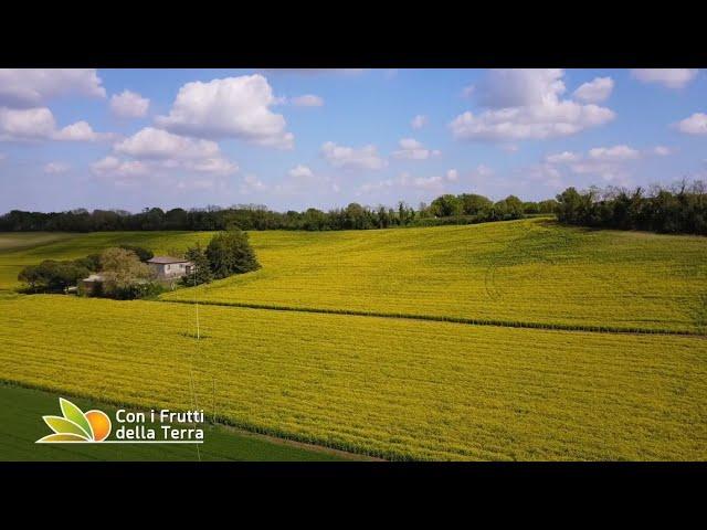 Puntata del 9/5/21 – 4° parte – I colori dell'agricoltura