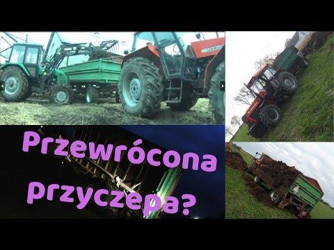 Przewrócona Przyczepa = Obornik Na Pryzmę 2K19 Ursus 1224/1614 HL 8011 Belaurs OPIS