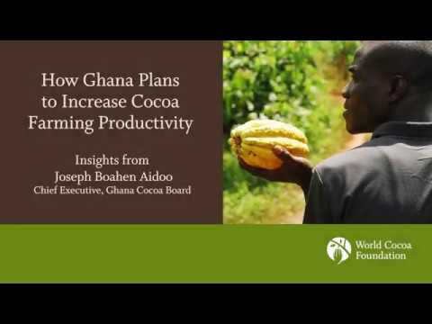 How Ghana Plans to Increase Cocoa Farming Productivity