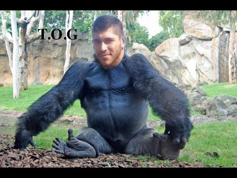 Monkey Business - TOGP #2