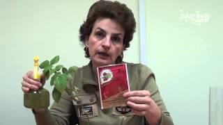 видео Паутинный клещ на розе: как бороться, эффективные средства