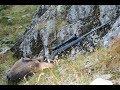 Gemsejagt i Transsylvanien,Chamois hunting in Romania,Gamsjagd in Rumänien