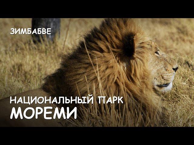 знакомства львов форум закрыт