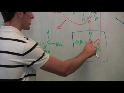 katalysator chemie beispiel essay