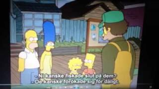 Simpsons s18e10 wife aquatic