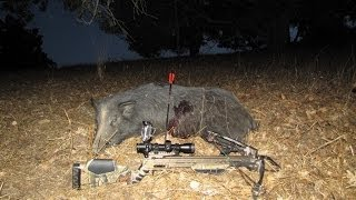 California Crossbow Pig Hunt - 5 Yard Kill