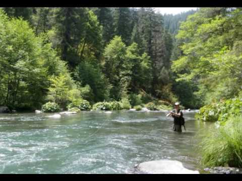 Fly Fisherman Watches Bigfoot Watch Him Near McCloud River..., And Then Follows Him!