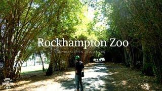 Beeindruckende Tierwelt - kostenfreier Zoobesuch - Vlog #33