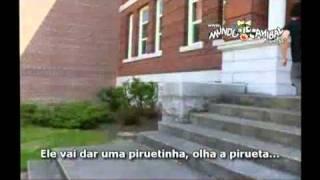 Baixar PARTOBA 6 (OFICIAL) DIRETO DO SITE
