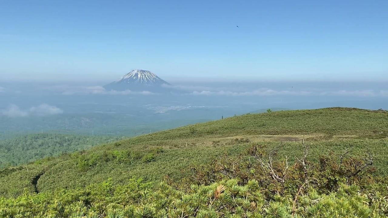 喜茂別岳   中岳林道コース 北海道夏山登山