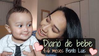 Diario de bebe 4-6 meses | Bento Luis