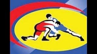 Всеармейское соревнование по спортивной борьбе 2 день