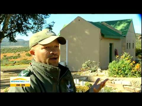 Namaqualand National Park has hidden treasures that few know about