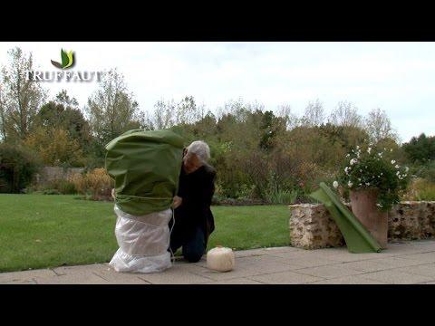comment protéger les plantes en pot du gel ? - jardinerie truffaut