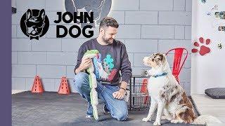 Zdechł pies - TRENING - John Dog