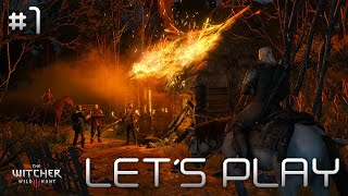 #1 The Witcher 3 : Wild Hunt - La TRAQUE | LET'S PLAY FR