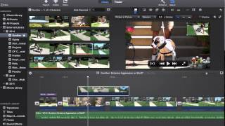 Tutorial: How to Overlay Video/Pictures in iMovie