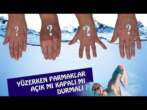 🎼 3 DAKİKADA BAĞLAMA NOTA YERLERİ (Kısa Sap) from YouTube · Duration:  3 minutes 53 seconds