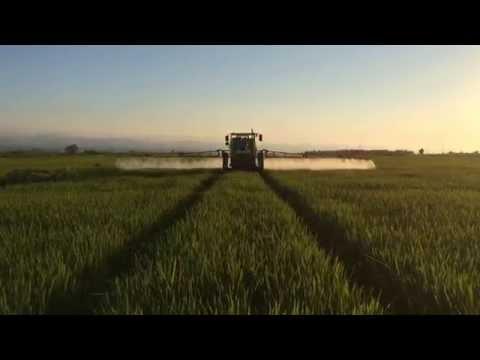 Rice Sprayer /Turkey  (Çeltik İlaçlama Makinesi)