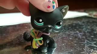 Lps: фотосессия чёрного кота с голубыми глазами 🤤😍😘
