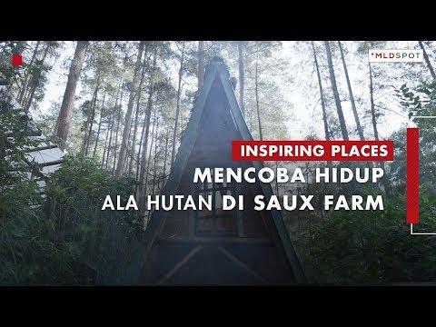 SAUX FARM: Perpaduan Rasa Antara Kehidupan, Kopi & Alam   Inspiring Places #34 Part 1