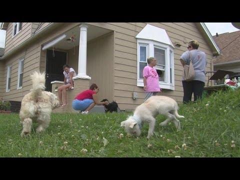Noon: Gina DeJesus enjoys life at home