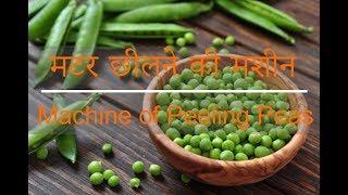 मटर छीलने की मशीन | Machine of Peeling Peas - Indian Machine Mart