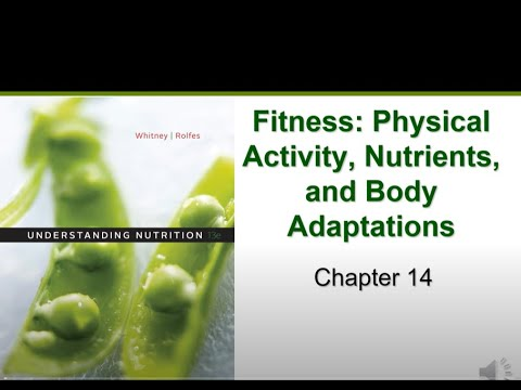 Fitness & Physical Activity (Chapter 14)
