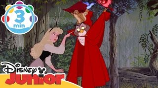 Sleeping Beauty | Once Upon A Dream | Disney Junior UK