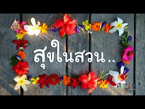 สุขในสวน จ.นครปฐม - วันที่ 25 May 2019