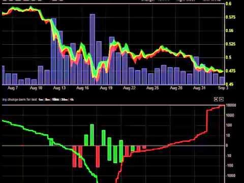 Bitcoin Forex Prekybininkas