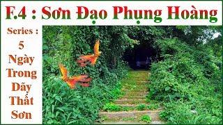5 Ngày Trong Dãy Thất Sơn _ F.4 : Sơn Đạo Phụng Hoàng !...