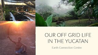 Living on an Off-Grid Biological Reserve in the Yucatan Jungle