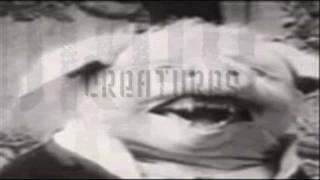 Play Indestructible (Kira And James Warren Instrumental)