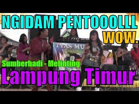 Ngidam Pentol tyas music House Musik Dangdut Koplo DJ Music Remix Lampung Terbaru
